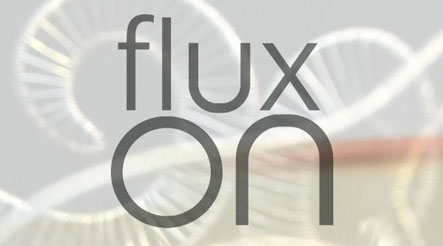 Flux studios offers classes and courses in jewellery making in London.